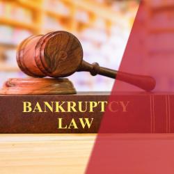 Litigation Fact image
